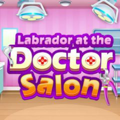 Labrador at the Doctor Salon