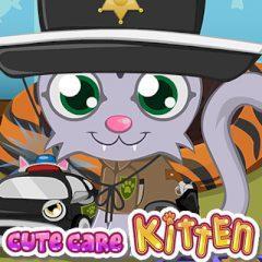 Cute Care Kitten
