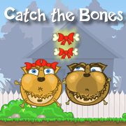 Catch the Bones