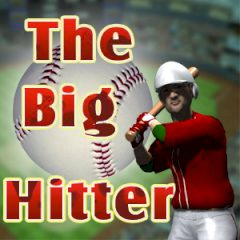 The Big Hitter Baseball