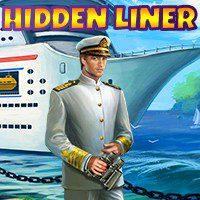 Hidden Liner