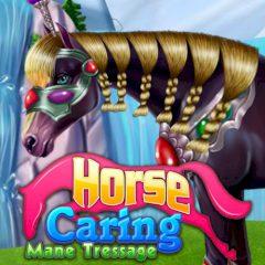 Horse Caring Mane Tressage