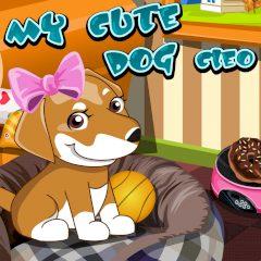 My Cute Dog Cleo